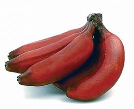 Интересные факты про банан
